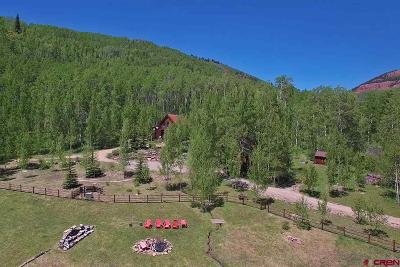 Crested Butte Single Family Home For Sale: 6475 County Road 740