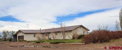 Del Norte Single Family Home For Sale: 6503 W County Road 7 North