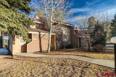 Pagosa Springs Condo/Townhouse For Sale: 33 Davis Cup Drive #4010