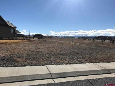 Montrose Residential Lots & Land For Sale: Wildhorse Court