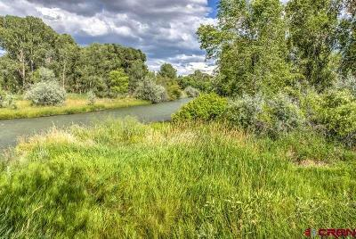 Montrose Residential Lots & Land For Sale: Highway 550 South