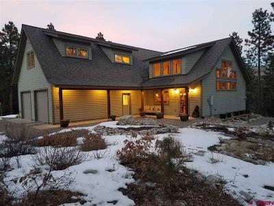 La Plata County Single Family Home For Sale: 496 Spruce Mesa Drive