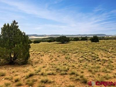 Montrose Residential Lots & Land For Sale: Rim Road