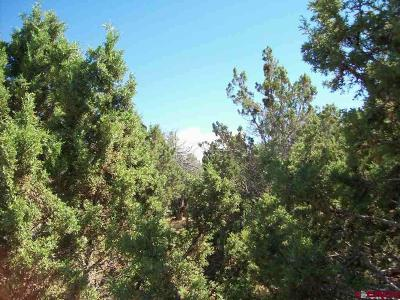 Cedaredge Residential Lots & Land For Sale: Pinon Drive
