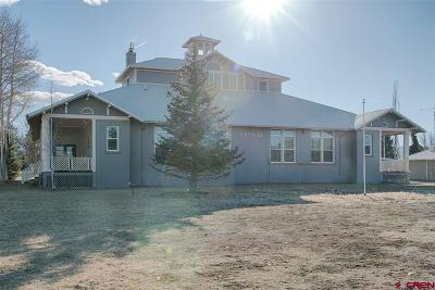 Montrose Single Family Home For Sale: 21049 Uncompaghre Road