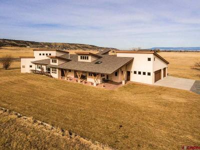 Montrose Single Family Home For Sale: 67751 Uintah Court