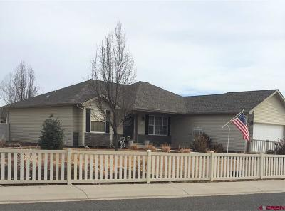 Montrose Single Family Home For Sale: 1739 Freedom Way