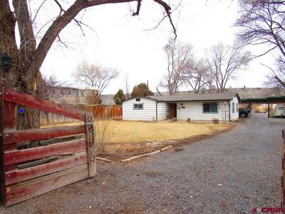 Eckert CO Single Family Home For Sale: $165,000