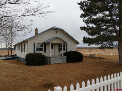 Montrose Single Family Home For Sale: 57750 Ida Road