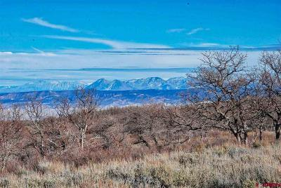 Montrose CO Residential Lots & Land For Sale: $848,000