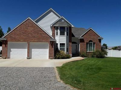 Delta County, Montrose County Single Family Home For Sale: 59363 Lupine Court