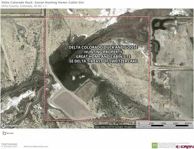 Delta Residential Lots & Land For Sale: 1800 Road