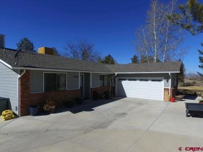 Delta County, Montrose County Single Family Home NEW: 61300 Lobo Drive