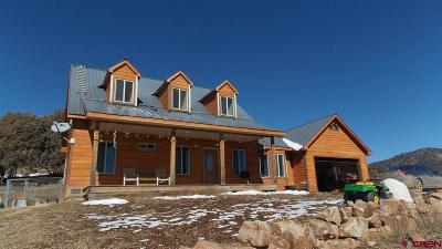 Pagosa Springs Single Family Home For Sale: 122 Usfs 653