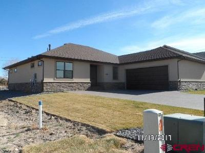 Delta County, Montrose County Single Family Home NEW: 3505 Woodbridge Place Place
