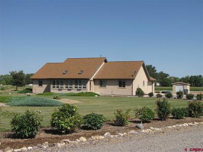 Delta County, Montrose County Single Family Home NEW: 62069 Spring Creek