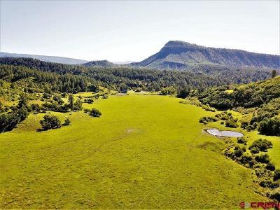 La Plata County Farm For Sale: 4385 Cr 207