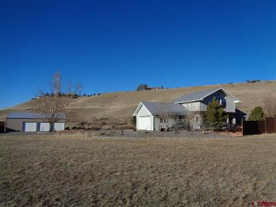 Montrose Single Family Home NEW: 19550 6575 Road