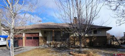 Montrose Single Family Home NEW: 1625 Dover Road