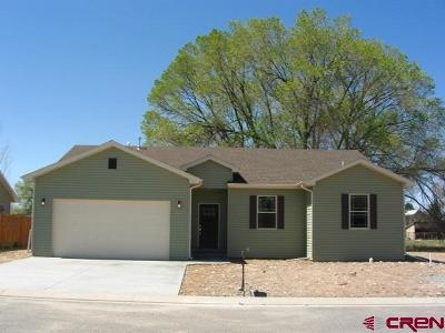 Montrose Single Family Home For Sale: 277 6410 Court