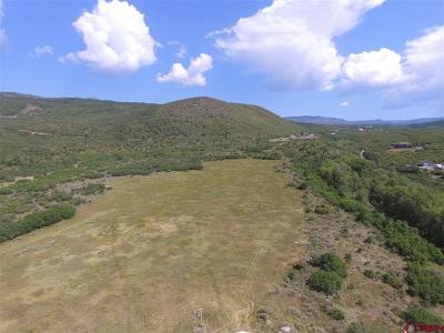 Cedaredge Residential Lots & Land For Sale: 25571 Vail Road