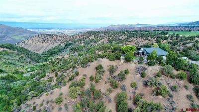 Montrose Single Family Home For Sale: 14022 N73 Road