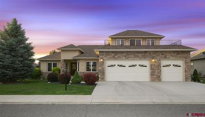 Montrose Single Family Home For Sale: 3733 Grand Mesa Drive