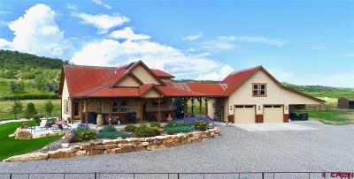 Montrose Single Family Home For Sale: 23739 Highway 550