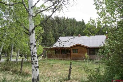 Durango Single Family Home For Sale: 4316 County Road 240