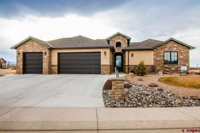 Montrose Single Family Home For Sale: 2808 Sleeping Bear Road