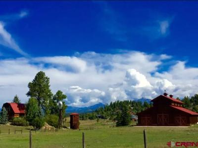 Pagosa Springs Single Family Home For Sale: 976 Hersch Avenue