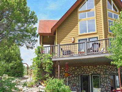 Mancos Single Family Home For Sale: 45275 Road J.8