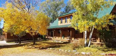 Pagosa Springs Single Family Home For Sale: 3508 County Road 400