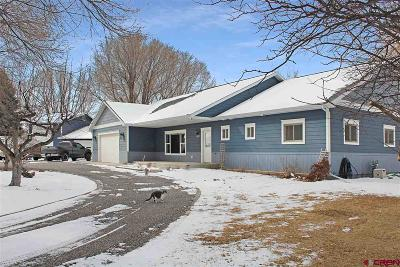 Montrose Single Family Home For Sale: 15138 6160 Road