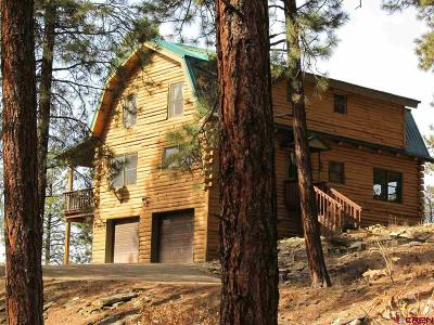 Durango Single Family Home For Sale: 138 Overlook Drive