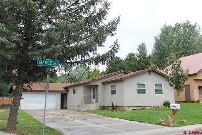 Durango Single Family Home For Sale: 12 Maple Drive