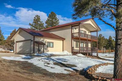 Pagosa Springs Single Family Home For Sale: 126 Rainbow Drive