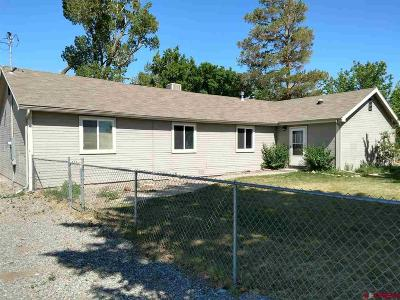 Montrose Single Family Home For Sale: 18390 550 Highway