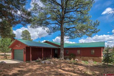 Pagosa Springs Single Family Home For Sale: 196 Beaver Circle