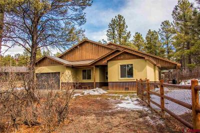 Pagosa Springs Single Family Home For Sale: 97 Sumac Court