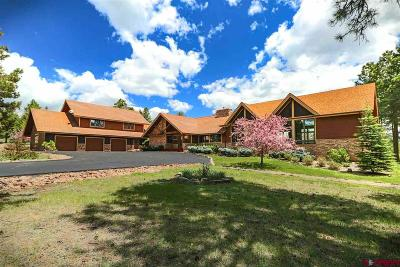 Pagosa Springs Single Family Home For Sale: 2000 Echo Canyon Ranch Lane