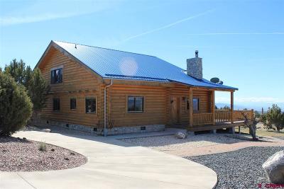 Cedaredge Single Family Home For Sale