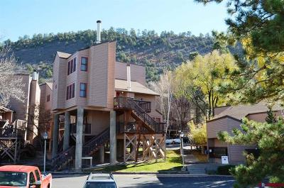 Durango Condo/Townhouse UC/Contingent/Call LB: 6 Ferringway Circle