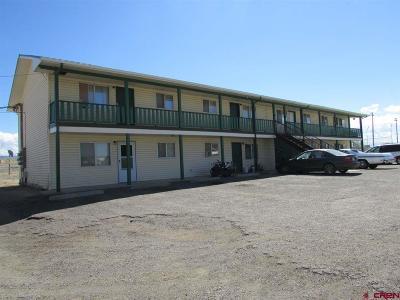 Olathe Multi Family Home For Sale: 723 S 2nd Street