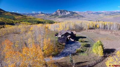 Crested Butte Single Family Home For Sale: 267 Squaw Gulch Lane