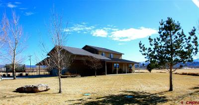 Montrose Single Family Home For Sale: 18826 6650 Road