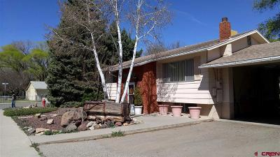 Delta Single Family Home For Sale: 1003 E 3rd Street