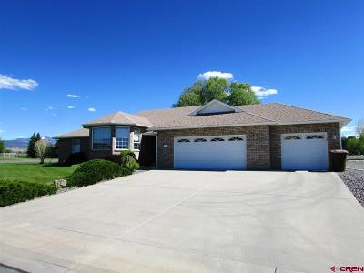Montrose Single Family Home For Sale: 1912 Otter Pond Circle