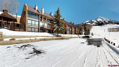 Mt. Crested Butte Condo/Townhouse For Sale: 51 Whetstone Road #2106