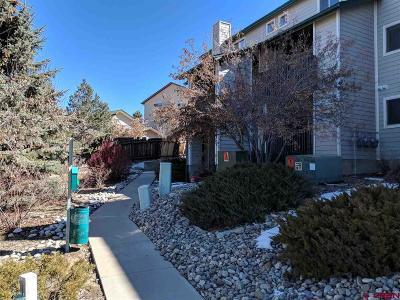 Durango Condo/Townhouse For Sale: 1100 Goeglein Gulch Rd #166